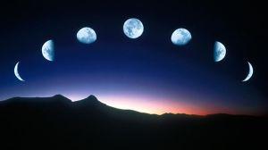 blue moon-970-80